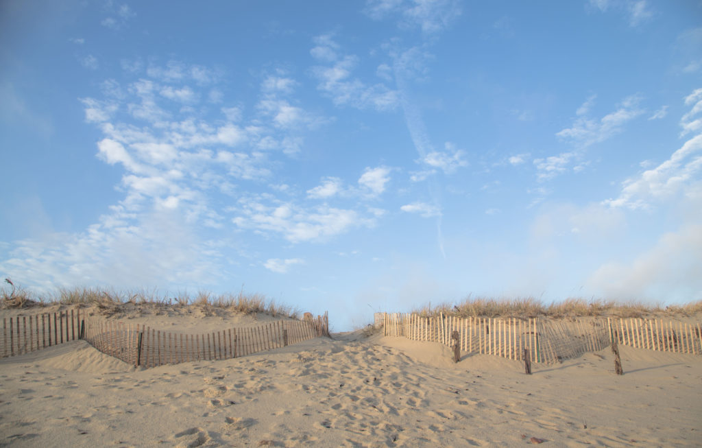 Introducing Great Point Properties' Newest Endeavor- #YourNantucket img