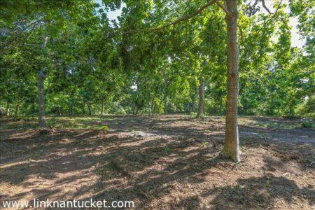 4 Hickory Meadow Lane, Cliff | BA:  0.0 | BR: 0 | $1850000 (1)